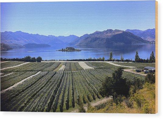 Vineyard View Of Ruby Island Wood Print