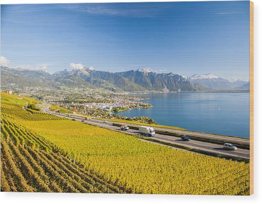 Vineyards Near Montreux Wood Print