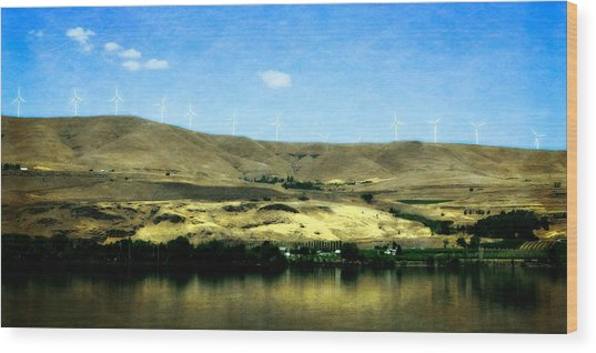 Vineyards On The Columbia River Wood Print