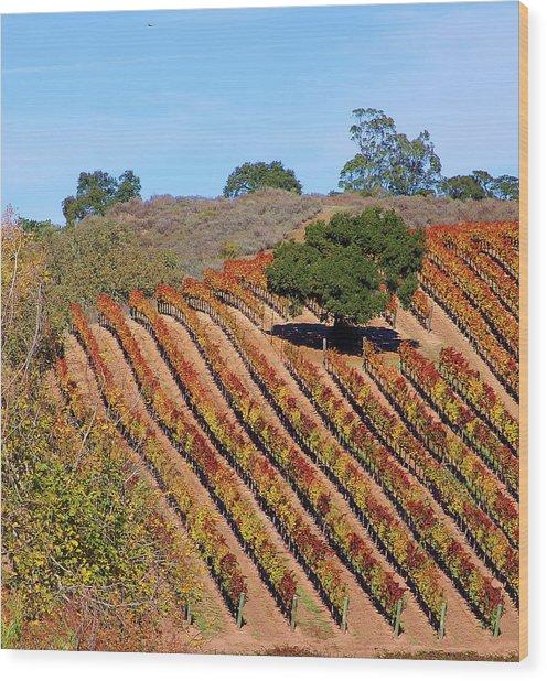 Vineyards Wood Print