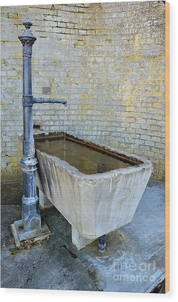 Vintage Fountain Wood Print