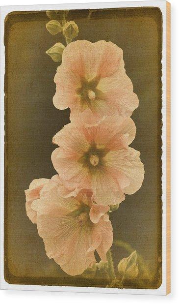 Vintage Hollyhock No. 2 Wood Print