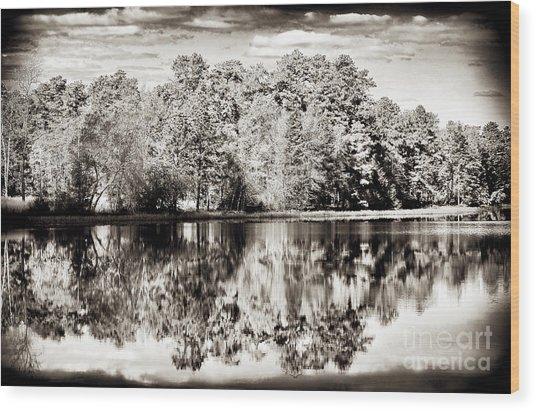 Vintage Pine Barrens Wood Print by John Rizzuto