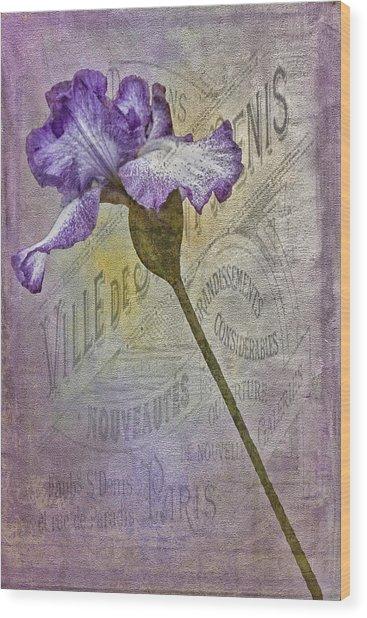Vintage Pourpre Iris Wood Print by Chanin Green
