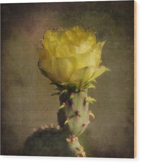 Vintage Yellow Cactus Wood Print