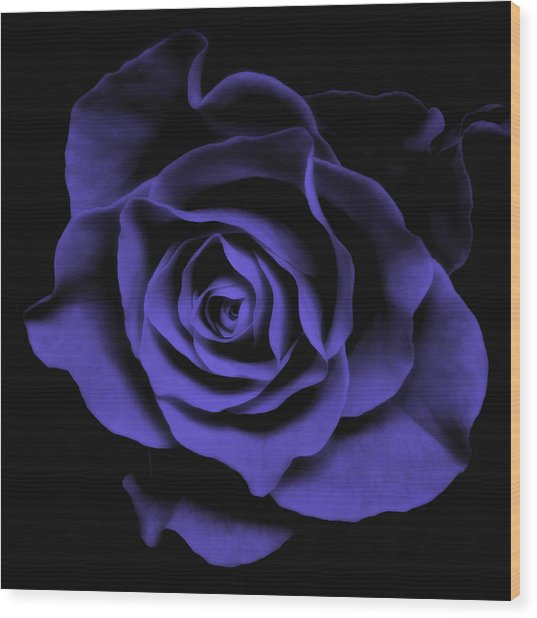 Abstract Blue Roses Flowers Art Work Photography Wood Print