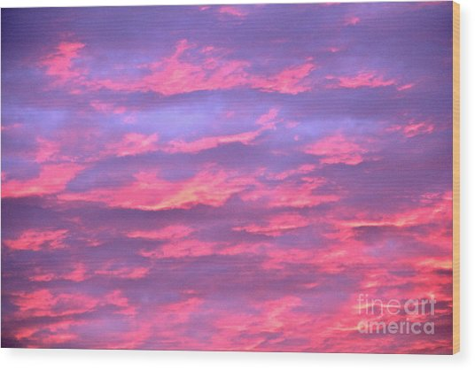 Violet Sunrise Wood Print by Jay Nodianos