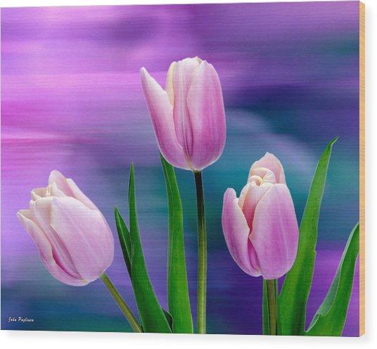 Violet Tulips Wood Print