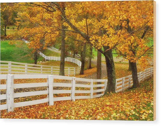 Virginia Horse Country Wood Print