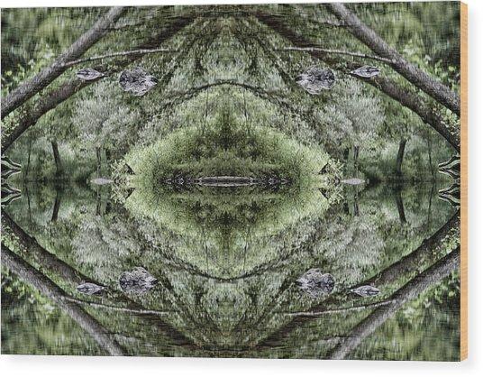 Visions Wood Print