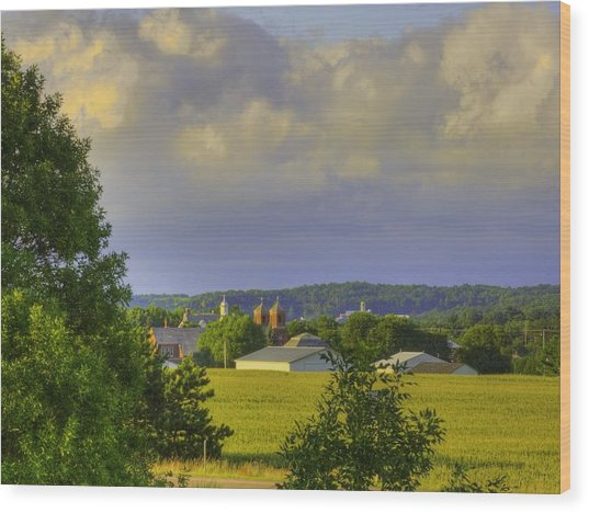 Vista At Tildon Wisconsin Wood Print