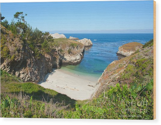 Vista Of China Cove At Point Lobos State Reserve California Wood Print by Artist and Photographer Laura Wrede