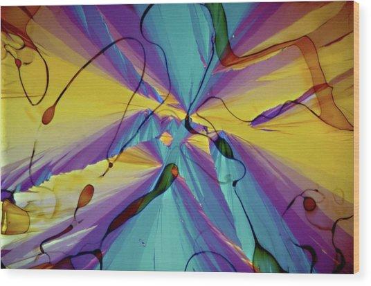 Vitamin E Crystals Wood Print by Dennis Kunkel Microscopy/science Photo Library