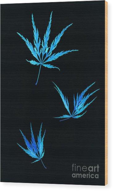 Vivid Blue Maple Leaves Falling Wood Print by Rosemary Calvert
