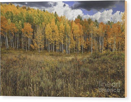 Vivid Wood Print