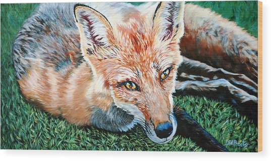 Vixen - Red Fox Wood Print