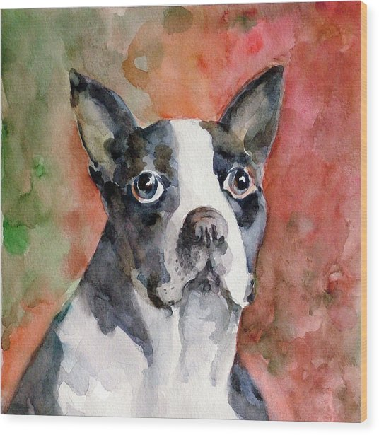 Vodka - French Bulldog Wood Print