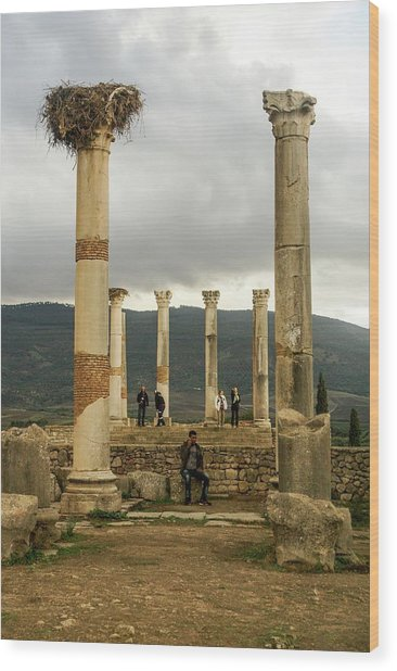 Volubilis Archeological Site Wood Print by Photostock-israel