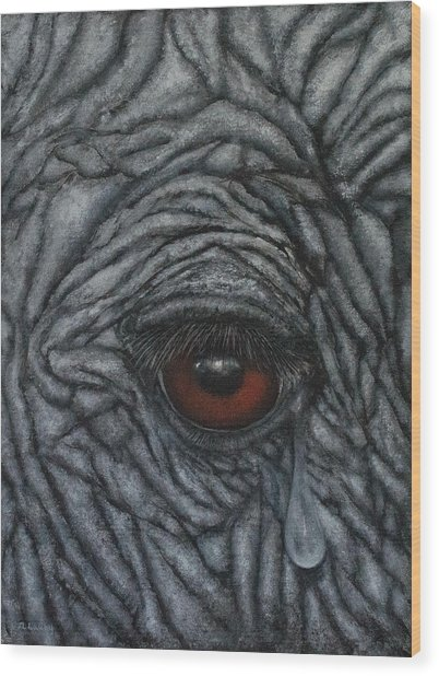 Vulnerable Comes Before Endangered Wood Print