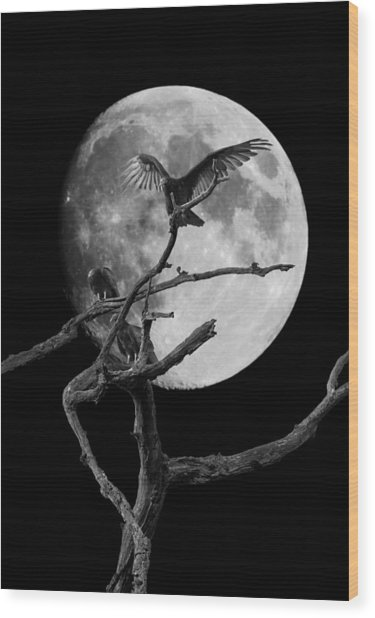 Vulture Moon Wood Print