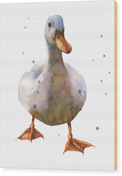Waddling White Duck Wood Print by Alison Fennell