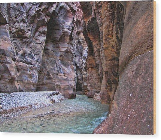 Wadi Mujib Wood Print