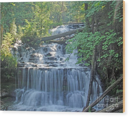 Wagner Falls  Soft Water Effect Wood Print