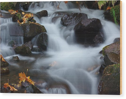 Wahkeena Creek 3 Wood Print