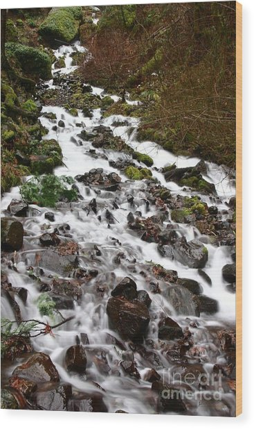 Wahkeena Falls Wood Print by Cari Gesch