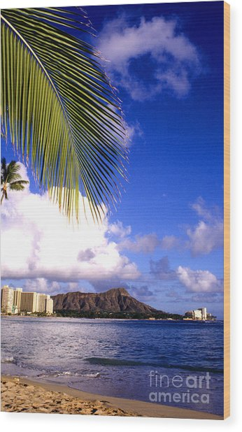 Waikiki Beach Diamond Head Wood Print