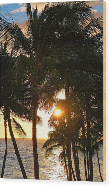 Waikoloa Palms Wood Print