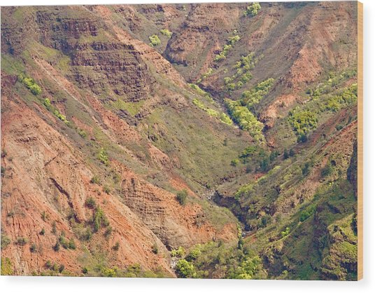 Waimea Canyon Abstract Wood Print