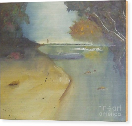 Waipu Cove In New Zealand Wood Print by Debra Piro