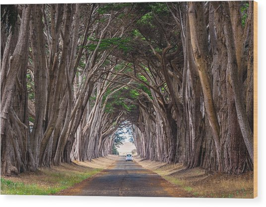 Wait For Me At The End Of Tunnel Wood Print