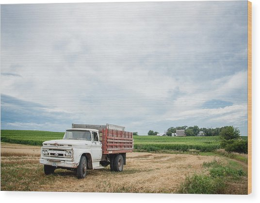 Waiting For Harvest Wood Print