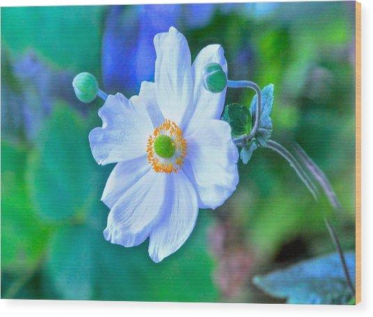 Flower 13 Wood Print