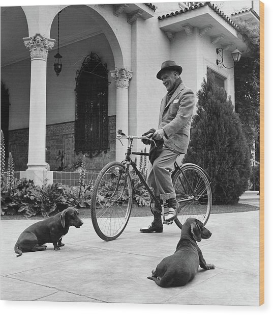 Waldemar Schroder On A Bicycle With Two Dogs Wood Print by Luis Lemus