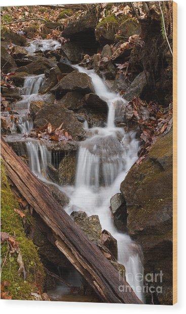 Walden Creek Cascade Wood Print