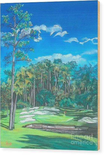 Walden On Lake Conroe Hole 8 Wood Print by Frank Giordano