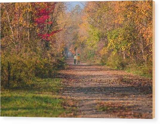 Waling Into Fall Wood Print