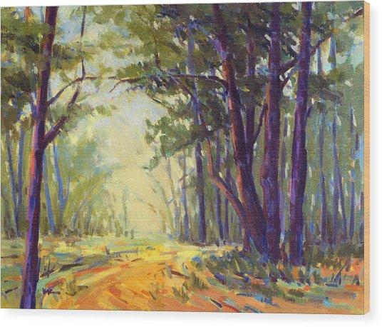 Walk In The Woods 5 Wood Print