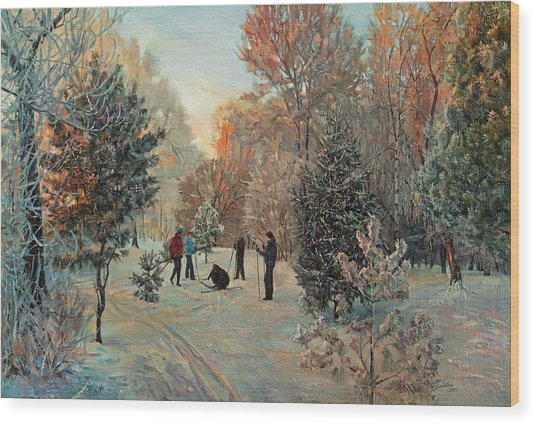 Walk To Skiing In The Winter Park Wood Print