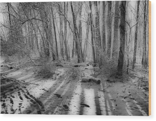 Walking  Amongst Shadows Wood Print by Thomas  MacPherson Jr