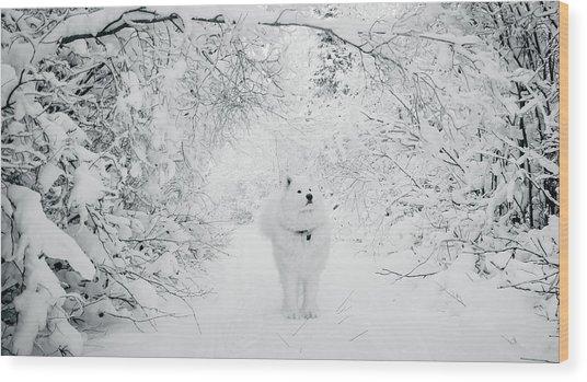 Walking In A Winter Wonderland Wood Print