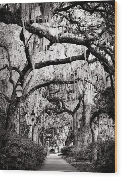 Walking In Forsyth Park In Black And White Wood Print