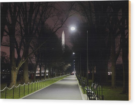 Walking Path Along The Reflecting Pool Wood Print