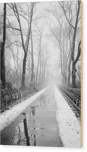 Walkway Snow And Fog Nyc Wood Print