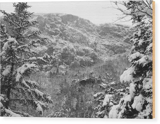 Wallface In Winter Wood Print
