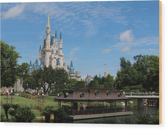 Walt Disney World Orlando Wood Print