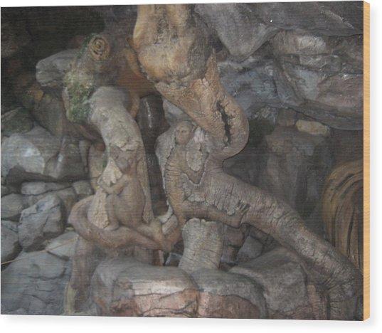 Walt Disney World Resort - Animal Kingdom - 121229 Wood Print by DC Photographer